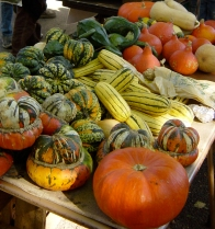 fall-vegetables (1)